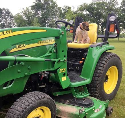 Ron's 3121 John Deere and his rescue pup, Jackson.