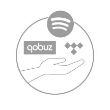20+ Streaming Services