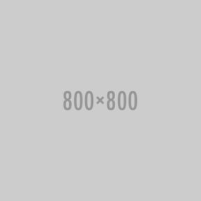 SR25 Portable Music Player (Moon Silver) with Protective Case