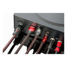 View Larger Image of NRG-X2 Power Cable for Sources - 3.28 ft (1m)