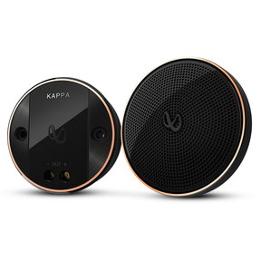 "KAPPA 20mx 2"" Midrange Speakers"