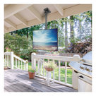 """View Larger Image of CM600G Outdoor Ceiling TV Mount for 37"""" to 70"""" TVs (Black)"""